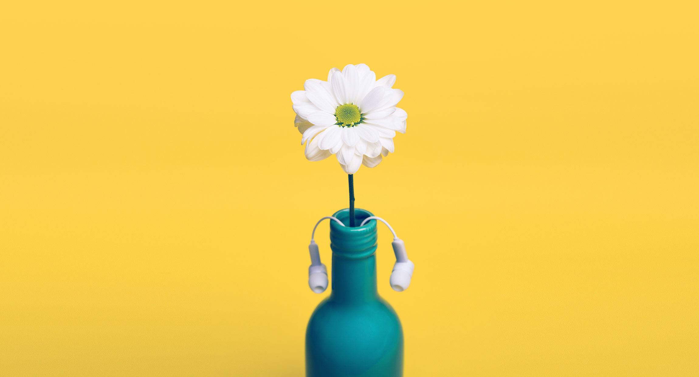 yellow-daisy-bottle-vase-headphones-earbuds-decor